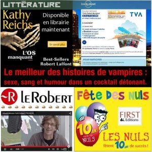 portfolio_sections_litterature